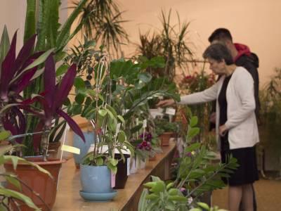 На АТФ прошла выставка-конкурс комнатных растений
