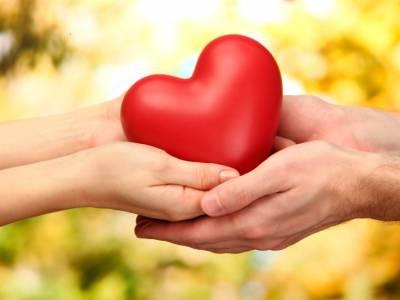 Как укрепить отношения в паре. В чём секрет гармоничных отношений?